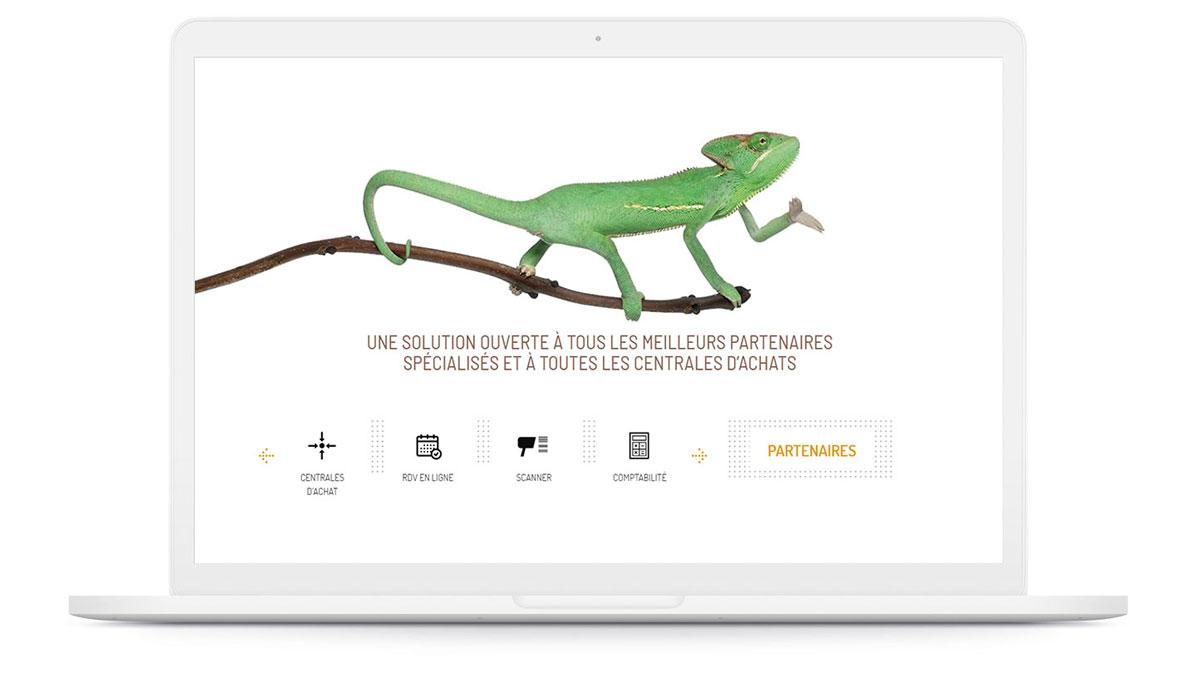 Dr Veto création site web agence communication karma sante nice paris